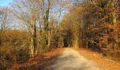 Trail Walk RETHEUIL - en forêt de Retz_76_dans les forêts de Retz et de Compiègne - Photo 27