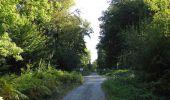 Trail Walk DAMPLEUX - en forêt de Retz_80_sur la Route Tortue et la Route Droite - Photo 143