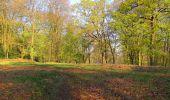Randonnée A pied VILLERS-COTTERETS - le GR11A  dans la Forêt de Retz  - Photo 103