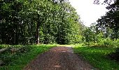 Randonnée Marche HARAMONT - en forêt de Retz_79_08_2019_vers Taillefontaine et Retheuil par les lisières - Photo 124