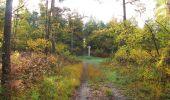 Randonnée Marche SAINT-JEAN-AUX-BOIS - en forêt de Compiègne_32_11_2019_les Tournantes de la Muette et sous la Tête Saint-Jean - Photo 102