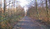 Trail Walk SAINT-JEAN-AUX-BOIS - en forêt de Compiègne_33_12_2019_les Tournantes de l'étang Saint-Jean et des Prés Saint-Jean - Photo 49