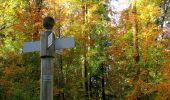 Randonnée Marche SAINT-JEAN-AUX-BOIS - en forêt de Compiègne_32_11_2019_les Tournantes de la Muette et sous la Tête Saint-Jean - Photo 162