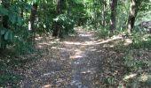 Trail Walk RUFFIGNE - 15.07.2019 - RUFFIGNE à ST AUBIN DES CHÂTEAUX sud - Photo 1