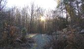 Trail Walk SAINT-JEAN-AUX-BOIS - en forêt de Compiègne_33_12_2019_les Tournantes de l'étang Saint-Jean et des Prés Saint-Jean - Photo 128