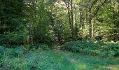 Trail Walk DAMPLEUX - en forêt de Retz_80_sur la Route Tortue et la Route Droite - Photo 269