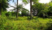 Randonnée Marche COYOLLES - en forêt de Retz_78_les rayons du Rond Capitaine - Photo 121