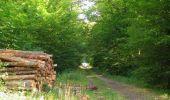Randonnée Marche LACROIX-SAINT-OUEN - en forêt de Compiègne_35_la Croix Saint-Sauveur_le Ru du Goderu - Photo 63