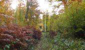 Randonnée Marche SAINT-JEAN-AUX-BOIS - en forêt de Compiègne_32_11_2019_les Tournantes de la Muette et sous la Tête Saint-Jean - Photo 146