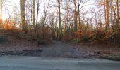 Trail Walk SAINT-JEAN-AUX-BOIS - en forêt de Compiègne_33_12_2019_les Tournantes de l'étang Saint-Jean et des Prés Saint-Jean - Photo 201