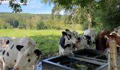 Randonnée Marche Jalhay - Sart - Photo 8
