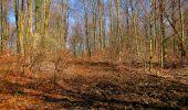 Randonnée A pied VILLERS-COTTERETS - le GR11A  dans la Forêt de Retz  - Photo 96