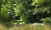 Randonnée Marche SAINT-JEAN-AUX-BOIS - en forêt de Compiègne_2_ruines gallo-romaines de Champlieu_les Petits Monts - Photo 53