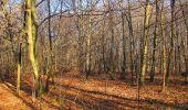 Trail On foot VIEUX-MOULIN - en forêt de Compiègne_23_la Grotte des Ramoneurs_le Mont Berny - Photo 100