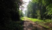 Randonnée Marche COYOLLES - en forêt de Retz_78_les rayons du Rond Capitaine - Photo 94