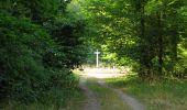 Randonnée Marche LACROIX-SAINT-OUEN - en forêt de Compiègne_35_la Croix Saint-Sauveur_le Ru du Goderu - Photo 71