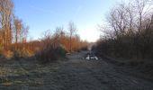 Trail Walk SAINT-JEAN-AUX-BOIS - en forêt de Compiègne_33_12_2019_les Tournantes de l'étang Saint-Jean et des Prés Saint-Jean - Photo 97
