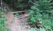 Randonnée Marche NIEDERBRUCK - niederbruck lochberg circuit - Photo 2