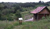 Randonnée Marche SENTHEIM - Sentheim Rossberg - Photo 3