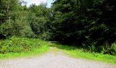 Randonnée Marche HARAMONT - en forêt de Retz_79_08_2019_vers Taillefontaine et Retheuil par les lisières - Photo 111