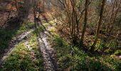 Trail On foot VIEUX-MOULIN - en forêt de Compiègne_23_la Grotte des Ramoneurs_le Mont Berny - Photo 34