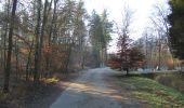 Trail Walk SAINT-JEAN-AUX-BOIS - en forêt de Compiègne_33_12_2019_les Tournantes de l'étang Saint-Jean et des Prés Saint-Jean - Photo 31