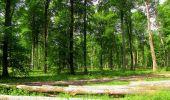 Randonnée Marche COYOLLES - en forêt de Retz_78_les rayons du Rond Capitaine - Photo 21