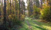 Randonnée Marche SAINT-JEAN-AUX-BOIS - en forêt de Compiègne_19_le Puits d'Antin_les Mares St-Louis_La Muette - Photo 48