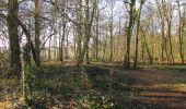 Trail Walk RETHEUIL - en forêt de Retz_76_dans les forêts de Retz et de Compiègne - Photo 39
