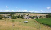 Trail Walk Havelange - De Havelange à Saint Fontaine par le village de Ossogne - Photo 4