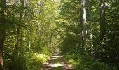 Trail Walk WASSELONNE - Geisweg - Elmerforst -Westhoffen - Photo 26