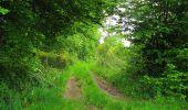 Randonnée Marche COYOLLES - en forêt de Retz_78_les rayons du Rond Capitaine - Photo 150