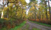 Trail Walk SAINT-JEAN-AUX-BOIS - en forêt de Compiègne_19_le Puits d'Antin_les Mares St-Louis_La Muette - Photo 170