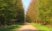 Randonnée Marche LONGPONT - en forêt de Retz_77_Longpont_Puiseux en Retz_AR - Photo 116