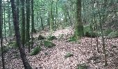 Randonnée Marche NIEDERBRUCK - niederbruck lochberg circuit - Photo 12