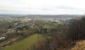 Randonnée Marche Rochefort - Lomme-Lesse: Rochefort-Ciergnon - Photo 2