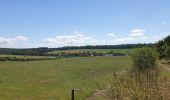 Trail Walk Havelange - De Havelange à Saint Fontaine par le village de Ossogne - Photo 5