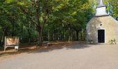 Randonnée Marche Tellin - repérage zero carbone 16092020 - Photo 6