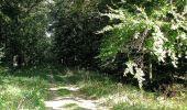 Trail Walk DAMPLEUX - en forêt de Retz_80_sur la Route Tortue et la Route Droite - Photo 112