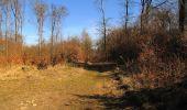 Trail Walk PIERREFONDS - en forêt de Compiègne_24_Tournantes sur le Voliard et sur la Fortelle_chaussée Brunehaut - Photo 147