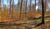 Randonnée A pied VILLERS-COTTERETS - le GR11A  dans la Forêt de Retz  - Photo 60