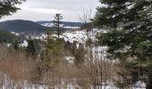 Randonnée Raquettes à neige GERARDMER - herardmer 1 - Photo 1