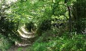 Randonnée Marche SION-LES-MINES - Boucle 16 km à Saint Aubin des Chateaux - Photo 4
