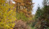 Randonnée Marche Yvoir - Boucle Spontin Durnal Spontin  - Photo 2