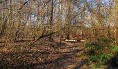 Trail Walk PIERREFONDS - en forêt de Compiègne_24_Tournantes sur le Voliard et sur la Fortelle_chaussée Brunehaut - Photo 67