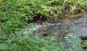Randonnée Marche LOCMELAR - ballade 270719 - Photo 5