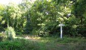 Randonnée Marche LACROIX-SAINT-OUEN - en forêt de Compiègne_35_la Croix Saint-Sauveur_le Ru du Goderu - Photo 24