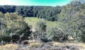 Randonnée Marche SAINT-OURS - 2019-09-12 - Puy des Gouttes - Puy Chopine -Puy Coquille - Puy de Jumes - Photo 6