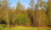 Randonnée Marche LONGPONT - en forêt de Retz_77_Longpont_Puiseux en Retz_AR - Photo 126