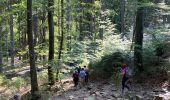 Randonnée Marche Jalhay - Sart - Photo 10